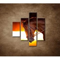 Obrazy na stenu - Kôň v stajni - 4dielny 80x90cm