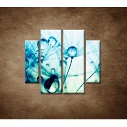 Obrazy na stenu - Kvapky vody na rastline - 4dielny 100x90cm