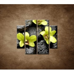 Obrazy na stenu - Kamene s kvapkami a orchideou - 4dielny 100x90cm