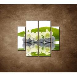 Obrazy na stenu - Biele kvety na kameňoch - 4dielny 100x90cm