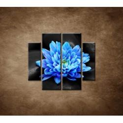 Obrazy na stenu - Modrý kvet na kameňoch - 4dielny 100x90cm