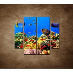 Obrazy na stenu - Podmorský svet - 4dielny 100x90cm