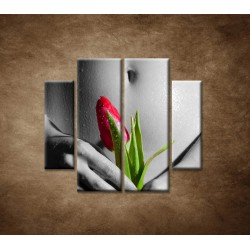 Obrazy na stenu - Mokré dievča s tulipánom - 4dielny 100x90cm
