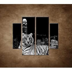 Obrazy na stenu - Mestský tiger - 4dielny 100x90cm
