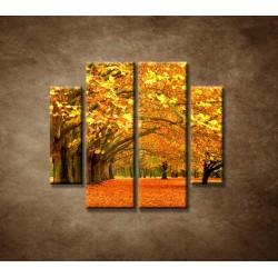 Obrazy na stenu - Park - 4dielny 100x90cm