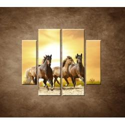 Obrazy na stenu - Divoké kone - 4dielny 100x90cm