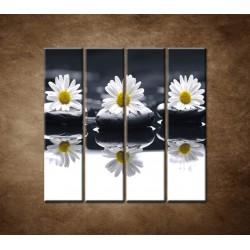 Obrazy na stenu - Tri sedmokrásky - 4dielny 120x120cm