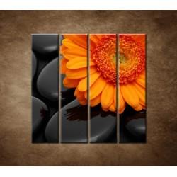 Obrazy na stenu - Oranžová gerbera na kameňoch - 4dielny 120x120cm