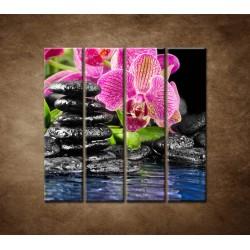 Obrazy na stenu - Kamene s kvetom - 4dielny 120x120cm