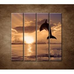 Obrazy na stenu - Skákajúci delfín - 4dielny 120x120cm