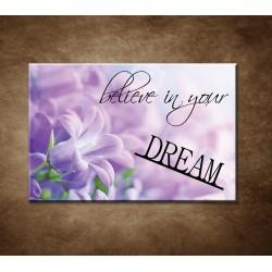 Believe in your dream