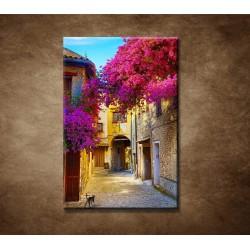 Obrazy na stenu - Ulička v Provence