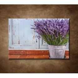 Obrazy na stenu - Vedro s levanduľou