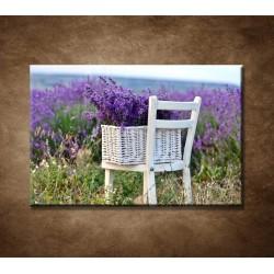 Obraz - Levanduľa na stoličke