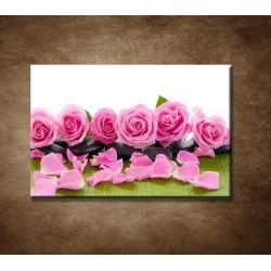 Obrazy na stenu - Ružové ruže na kameňoch