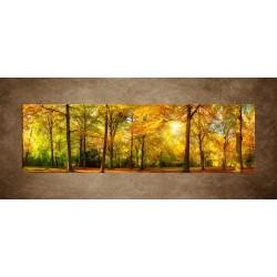 Jesenný dub