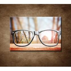 Obrazy na stenu - Okuliare