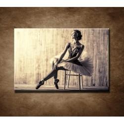 Obrazy na stenu - Profesionálna baletka
