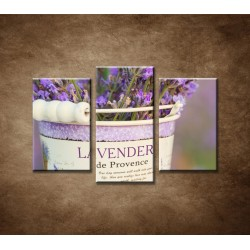 Obrazy na stenu - Levanduľa v kvetináči - 3-dielny 75x50cm