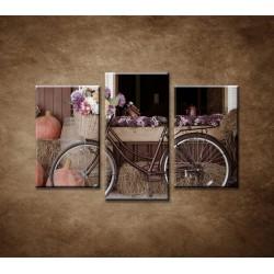 Obrazy na stenu - Bicykel a kvety - 3-dielny 75x50cm