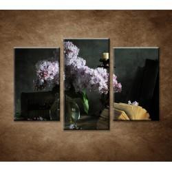 Obrazy na stenu - Orgován - 3-dielny 75x50cm