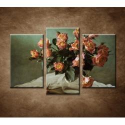 Obrazy na stenu - Ruže - 3-dielny 75x50cm