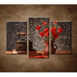 Obrazy na stenu - Stará kniha a maky - 3-dielny 75x50cm
