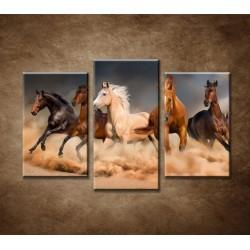 Obrazy na stenu - Stádo koní - 3dielny 75x50cm