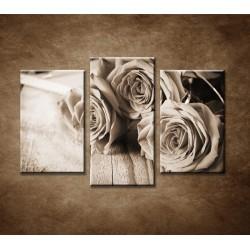 Obrazy na stenu - Ruže na stole - 3dielny 75x50cm