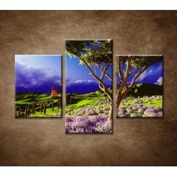 Obrazy na stenu - Levanduľové pole pred búrkou - 3dielny 90x60cm