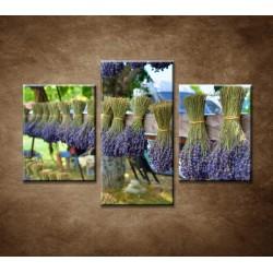 Obrazy na stenu - Sušená levanduľa - 3dielny 90x60cm