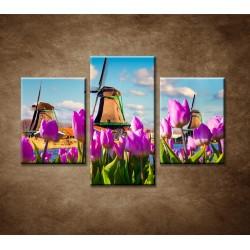 Obrazy na stenu - Veterné mlyny - 3dielny 90x60cm