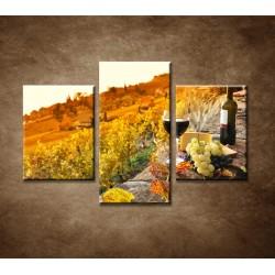 Obrazy na stenu - Vinice na jeseň - 3dielny 90x60cm
