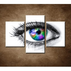Obrazy na stenu - Farebné oko - 3dielny 90x60cm