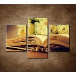 Obrazy na stenu - Stará kniha a ruže - 3dielny 90x60cm