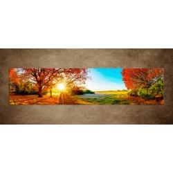 Obrazy na stenu - Farebná jesenná príroda