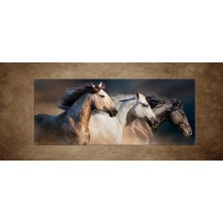 Obrazy na stenu - Kone s dlhými hrivami