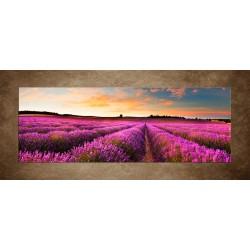 Obrazy na stenu - Levanduľová krajina