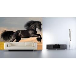 Fototapety - Skákajúci kôň