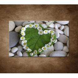 Srdce z kvetov