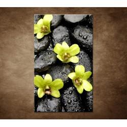 Kamene s kvapkami a orchideou