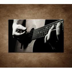 Obrazy na stenu - Gitarista
