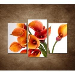 Oranžové kaly - 3dielny 75x50cm