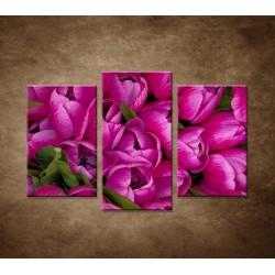 Krásne tulipány - 3dielny 75x50cm