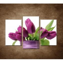 Obrazy na stenu - Svieže tulipány - 3dielny 75x50cm