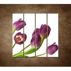 Fialové tulipány - 4dielny 120x120cm
