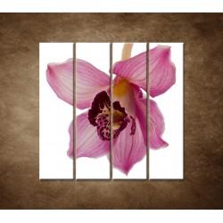 Orchidea - detail - 4dielny 120x120cm