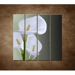 Tri biele kaly - 4dielny 120x120cm