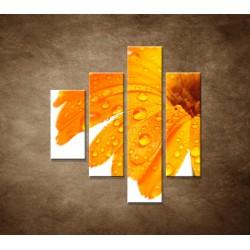 Oranžová gerbera - 4dielny 80x90cm