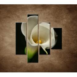 Obrazy na stenu - Kala - 4dielny 80x90cm